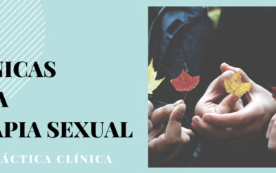 Técnicas de la terapia sexual