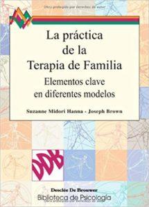 Libro la práctica de la terapia de familia